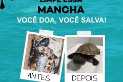 POSTS - CAMPANHA LIMPE ESSA MANCHA.cdr